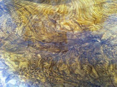 Tìm hiểu chi tiết về gỗ cây măn