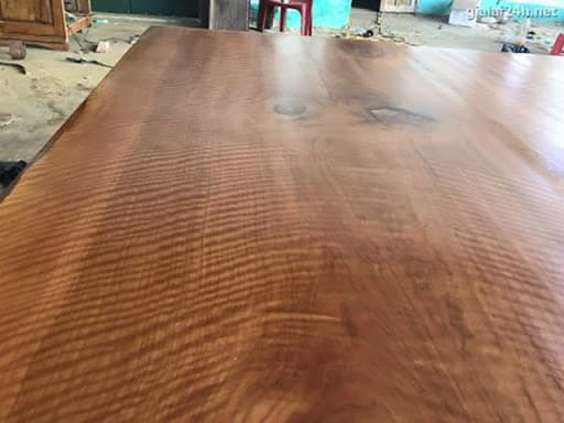 Tìm hiểu chi tiết gỗ cây Lát và ứng dụng trong đời sống